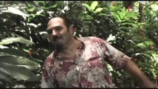 Busty Cops Go Hawaiian (2010)